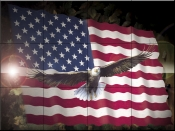 American Eagle & Flag    - Tile Mural