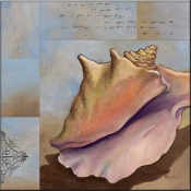 PB-Conch Collage - Accent Tile