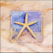 Summer Starfish - Accent Tile