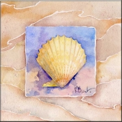 Summer Scallop - Accent Tile