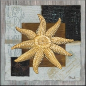 Westport Sun Starfish    - Tile Mural