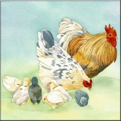 LW-Rooster 2 - Accent Tile