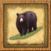 DM-Lodge Black Bear 1 - Accent Tile