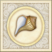 DM-By The Shore - Seashell 2  - Accent Tile