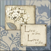 JM- Live to Love II - Accent Tile