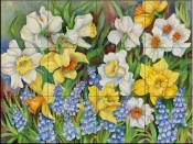 Daffodils and Grape Hyacinths - JTP - Tile Mural