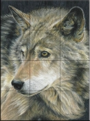 Curious Eyes - CK - Tile Mural