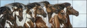 Painted Ponies - CM - Tile Mural
