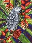 Grey Parrot - DF - Tile Mural