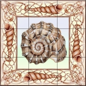 Seashell Square 1 - DF - Tile Mural