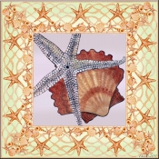 Seashell Square 3 - DF - Accent Tile