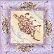 Seashell Square 10 - DF - Accent Tile