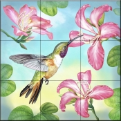 RS-Bahama Woodstar in Orchid Tree - Tile Mural