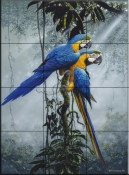 Blue and Yellow Macaws 2    - Tile Mural