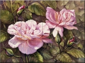 PTS - Pink Roses - Tile Mural