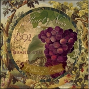 Wines of France II - CB - Accent Tile