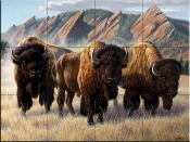 Bison Under The Flatirons - CF - Tile Mural