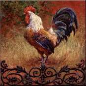 Iron Gate Rooster Square - LSH - Accent Tile