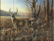 Bluff Country Buck - JH - Tile Mural