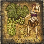 DM-The Wine Bearer - Accent Tile