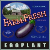 LS-Farm Fresh Eggplant    - Tile Mural