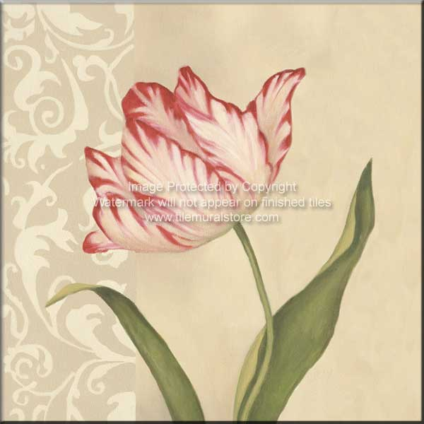 10 Cream Tulip - Accent Tile Special