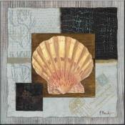 PB-Westport Scallop - Accent Tile