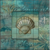 Coquillage 2   - Tile Mural