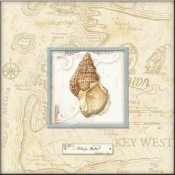 CA-Sea Treasure III - Accent Tile