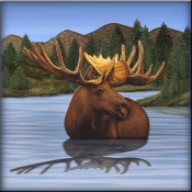 DM-Moose 2 - Accent Tile