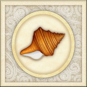 DM-By The Shore - Seashell 5  - Accent Tile