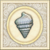 DM-By The Shore - Seashell 8 - Accent Tile