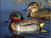 Green Wing Teal Couple-CF - Tile Mural