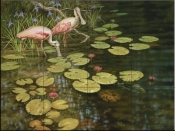 Spoonbill Lilies-DR - Tile Mural
