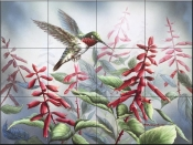 Summer Hummingbird-WM - Tile Mural