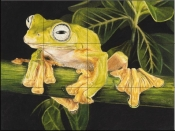 Musky Flying Frog-BK - Tile Mural