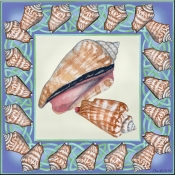 Seashell Square 4 - DF - Accent Tile