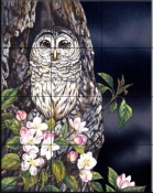 Owl and Apple Blossoms    - Tile Mural