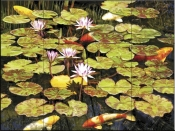 Koi Pond I-RS - Tile Mural
