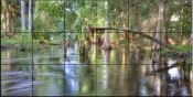 Cypress in the Swamp - SA - Tile Mural