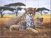 Cheetah and Bubs - MM - Tile Mural