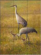 Golden Hour Sand Hill Cranes - LSH - Tile Mural