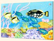 Clown and Trigger Fish - Splashback Mural