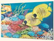 Racoon and Butterfly Fish - Splashback Mural