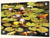 Koi Pond I-RS - Splashback Mural