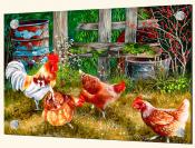 Pickin Chickens-VS - Splashback Mural