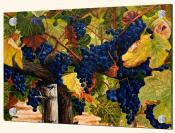MT-Ancient Vine I - Splashback Mural