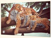 African Leapoard and Cubs - MM - Splashback Mural